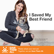 Author, Lifestyle Blogger Katherine Schwarzenegger Encourages Adoption  of Shelter