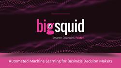 Big Squid, Inc.
