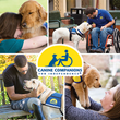 The Sekhawat Agency Initiates Charity Drive to Provide Companion Canines to Individuals with Disabilities