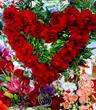 <californiaflowermallvalentinesdayflowers>