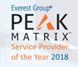 Everest Group Announces Winners of 2018 IT Service Provider of the Year Awards