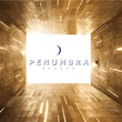 Antenna79 (Formerly Invisible Gadget Guard) Announces New Corporate Name - Penumbra Brands, Inc.