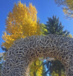 34th Annual Jackson Hole Fall Arts Festival in Wyoming Announces September Dates for 2018 Event