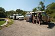 Bridget's Wedding Safari - 7 Vans