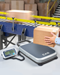Alliance Scale New Portable Bench Scale Solves Overflow Weighing Requirements