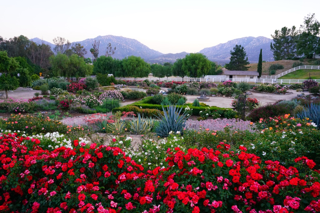 Visit Temecula Valley Announces Hidden Gems for Visitors to Discover ...