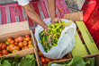 Grow a Bountiful Garden to Share with the Hungry this Growing Season