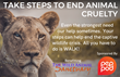 PepPod All-natural, Plant-based Energy Tablets Teams Up with Sentiv to Benefit Exotic Animal Conservation at The Wild Animal Sanctuary