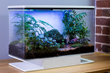 SmartTerra, the Fully Customizable Smart Terrarium, Launches Pre-orders on Indiegogo's InDemand After Successful Kickstarter Campaign