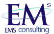 EMS Consulting Welcomes Lisa Nicholas as Chief Business Architect & Strategist