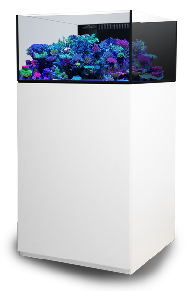 waterbox aquariums launches 25 new aquarium models for 2018