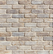 Both bright and complex, the airy appeal of Latigo TundraBrick creates new possibilities for brick with vibrant earth tones.