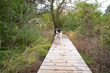 Grab A Leash and Hit the Trails of the Tennessee River Valley with Man's Best Friend