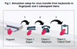 Fig. 1 Simulation setup for virus transfer from keyboards to fingerpads and three subsequent items.