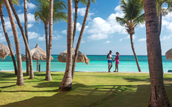 Divi Resorts Cool Breeze & Palm Trees Sale