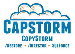 Capstorm- Salesforce Disaster Recovery Experts since 2011