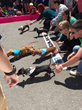 Lake Compounce to Host 5th Annual Pinks Weiner Dog 100