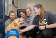 The Dog is in: American International College Resident Pet Therapy Dog Delivers Comfort and a Smile
