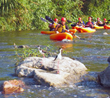 LA River Expeditions Marks 10 Years of LA River Revolution