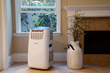 NewAir Brings the Big Chill With Portable A/C for Summer