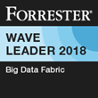 Denodo Recognized as a Leader in Big Data Fabric Report by Independent Analyst Firm