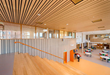 Sound Seal Introduces WoodTrends Linear for Walls and Ceilings