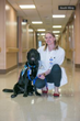 Calvary Hospital Receives Facility Dog from Canine Companions for Independence