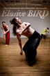 "Rebecca Stenn Company Premiers ""Elusive Bird"" in Brooklyn"