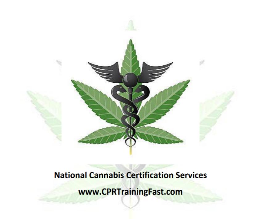 Online Medical Education Ventures Into Medical Marijuana Industry