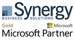 Synergy Business Solutions' Board of Directors Appoints Donna M. Hurst President and Chief Executive Officer