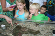 """Dive In"" to the Mysteries of the Ocean at Adventure Science Center"
