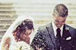 Wedding Services San Luis Obispo Website Launched By Access Publishing