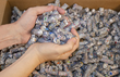 DLS Converts 2 Million Pounds of Label Waste into Clean Energy