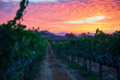 Visit Temecula Valley Announces A Dozen Best Places to Watch Late Summer Sunsets in Temecula Valley Southern California Wine Country