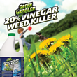Green Gobbler Announces Safe, Eco-Friendly Weed Killer