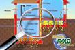 High Levels of Radioactive Radon Gases Detected in Miami Reports Miami Mold Specialists