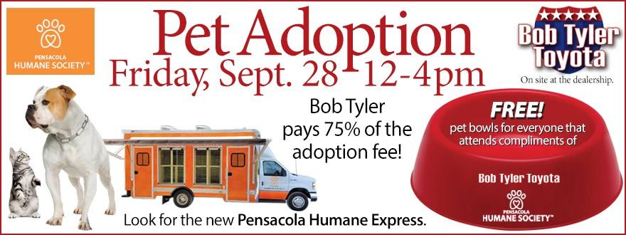 bob tyler toyota to host adopt a thon pet adoption event. Black Bedroom Furniture Sets. Home Design Ideas