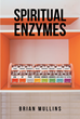 "Brian Mullins's Newly Released ""Spiritual Enzymes"" is a Pragmatic Devotional and Operating Manual for Life's Challenges"