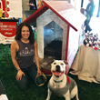 Pfluger's Doghouse Wins Best of Show at Austin Barkitecture Event