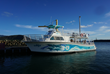 Oahu Dolphin Swim Tour Invests $1 Million on New Boat and Reflects on its 30-Year History