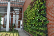 LiveWall Living Walls Enliven the Healing Landscape at HOPE Tower