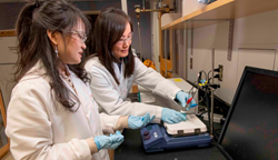 WPI chemical engineering professor Hong Susan Zhou, left, and PhD candidate Zhiru Zhou examine a prototype electrochemical biosensor that can quickly detect the potentially deadly C. diff bacteria.