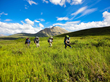 Backpacking students hike through an alpine meadow in Alaska with NOLS, a nonprofit, global wilderness school that educates students to step forward on an expedition (photo by Noah Evans).