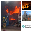 CSFA/California Casualty Team Up for Photo Contest