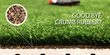 Replacement For Crumb Rubber Hits Artificial Turf Market