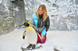 RGF's Guardian Air PHI-cell® Technology Protects Penguin Habitat in Ski Dubai's Winter Resort