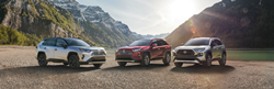 three 2019 Toyota RAV4s parked in front of mountains