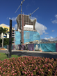 East Coast Flooring & Interiors Lands Hard Rock Guitar-Shaped Hotel Project