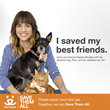 "Natalie Morales, Star of NBC's New Comedy ""Abby's,"" Joins National Campaign to Promote Pet Adoption"
