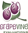 Grapevine Evaluations Streamlines 360 Evaluations and Performance Reviews With Advanced Reporting Features